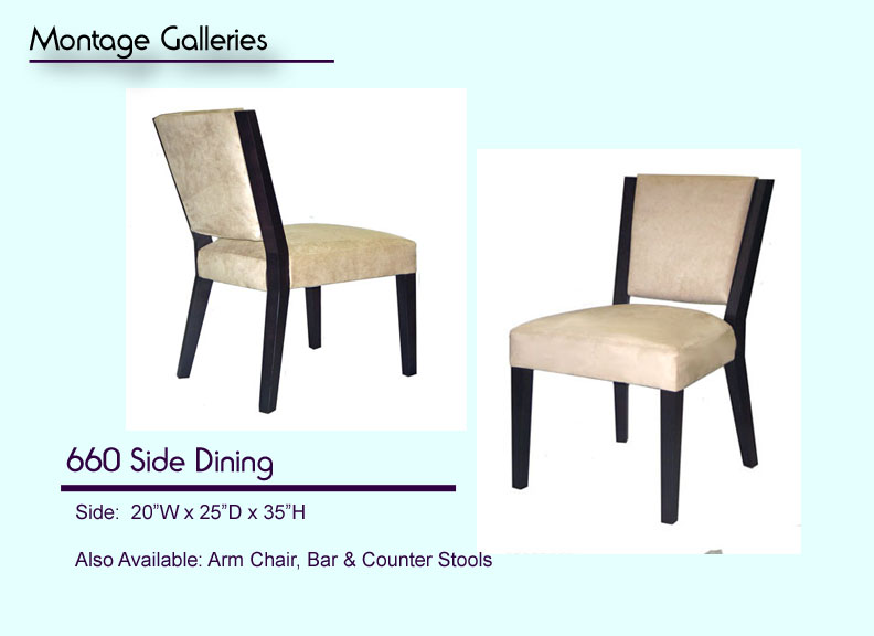 CSI_Montage_Galleries_660_Side_Dining_Chair