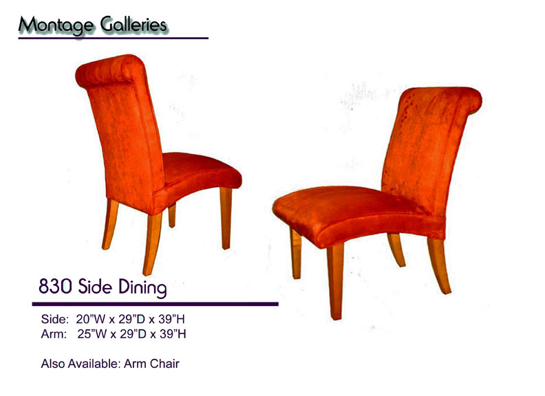 CSI_Montage_Galleries_830_Side_Dining_Chair