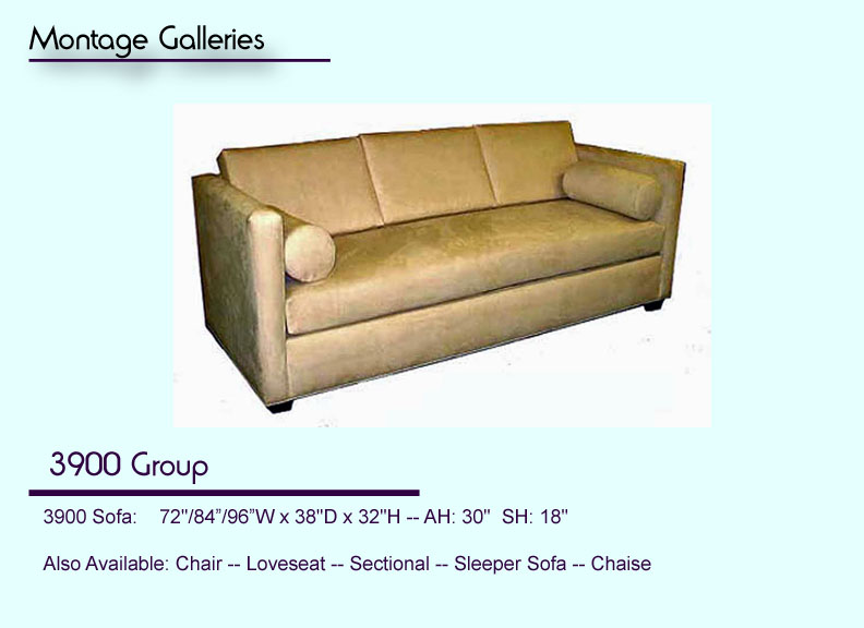 CSI_Montage_Galleries_Sofa_3900_Group