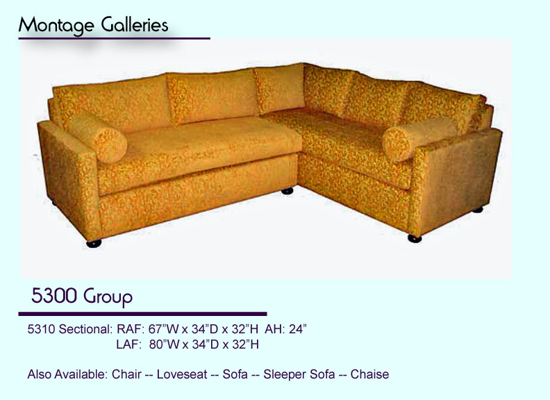 CSI_Montage_Galleries_Sofa_5300_Group