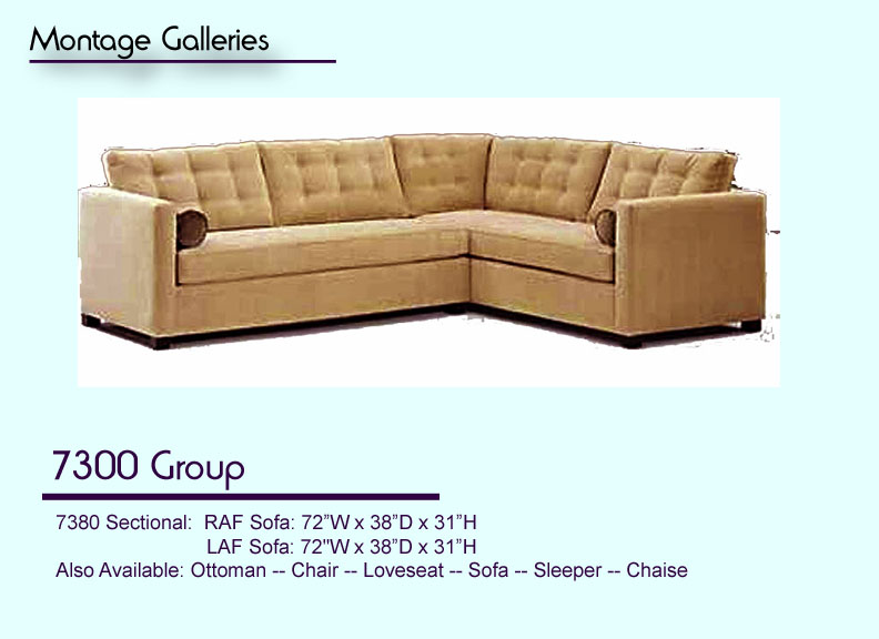 CSI_Montage_Galleries_Sofa_7300_Group